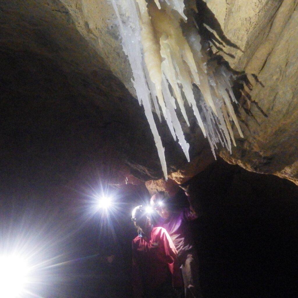 Découverte des stalactites en spéléologie avec des enfants